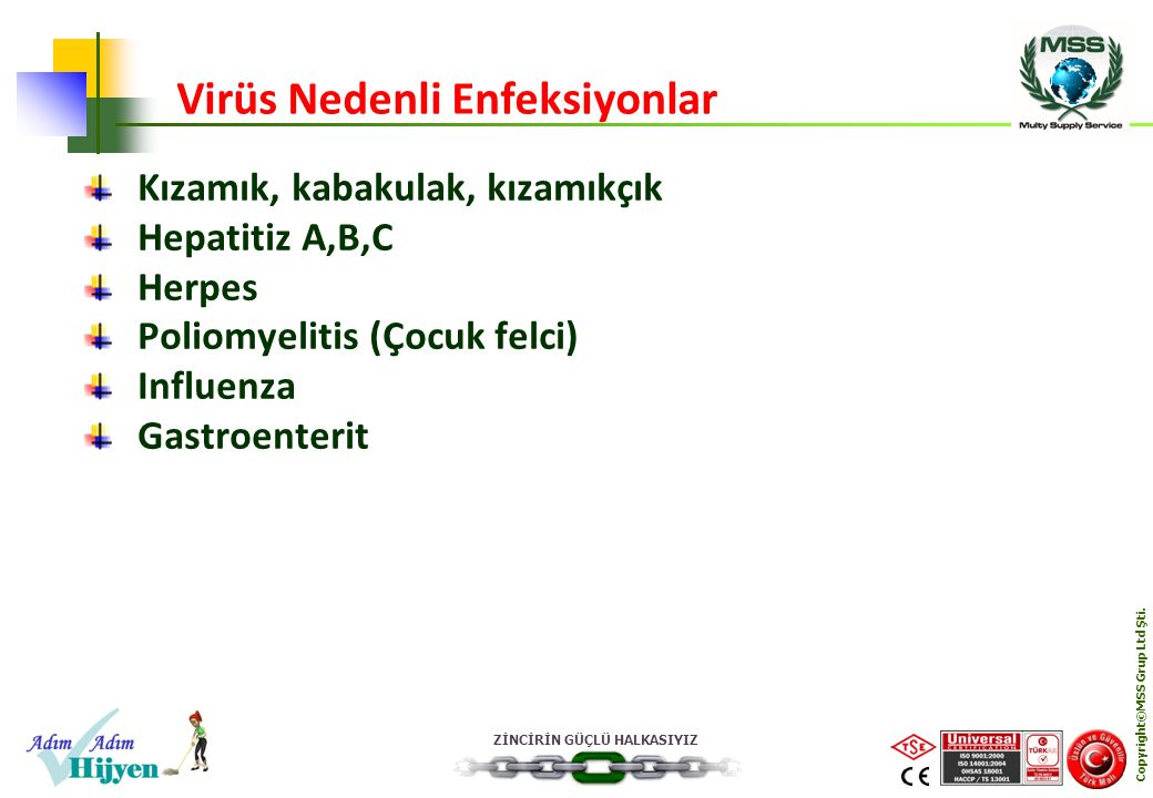 ZİNCİRİN GÜÇLÜ HALKASIYIZ Copyright©MSS Grup Ltd Şti. Kızamık, kabakulak, kızamıkçık Hepatitiz A,B,C Herpes Poliomyelitis (Çocuk felci) Influenza Gast