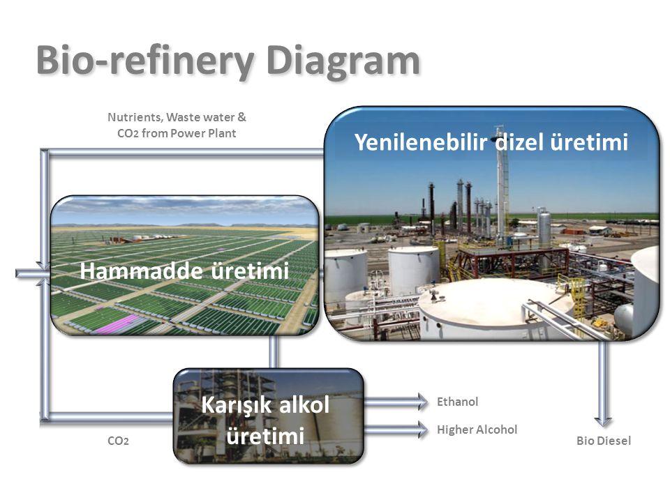 H2H2 CO 2 Ethanol Higher Alcohol Bio Diesel Nutrients, Waste water & CO 2 from Power Plant LPG,C0 2 Algae Growing Algae Harvesting Hydrotreater Isomer