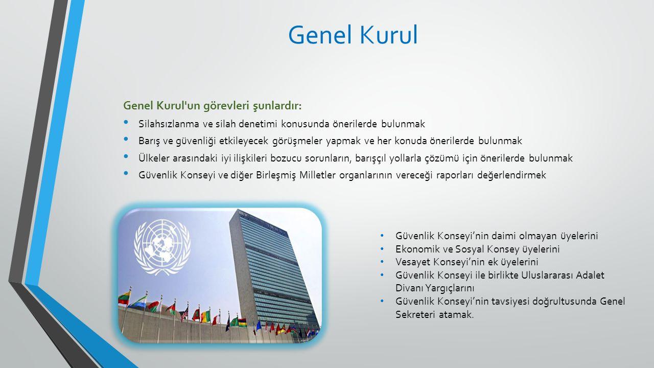 Genel Kurul'un görevleri şunlardır: Silahsızlanma ve silah denetimi konusunda önerilerde bulunmak Barış ve güvenliği etkileyecek görüşmeler yapmak ve