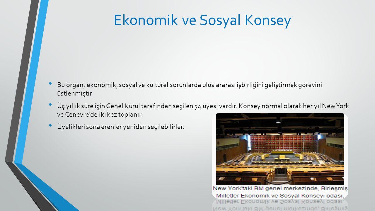 Ekonomik ve Sosyal Konsey Bu organ, ekonomik, sosyal ve kültürel sorunlarda uluslararası işbirliğini geliştirmek görevini üstlenmiştir Üç yıllık süre