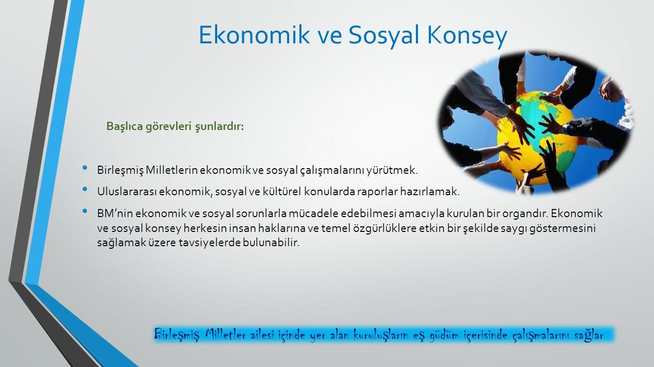 Başlıca görevleri şunlardır: Birleşmiş Milletlerin ekonomik ve sosyal çalışmalarını yürütmek. Uluslararası ekonomik, sosyal ve kültürel konularda rapo