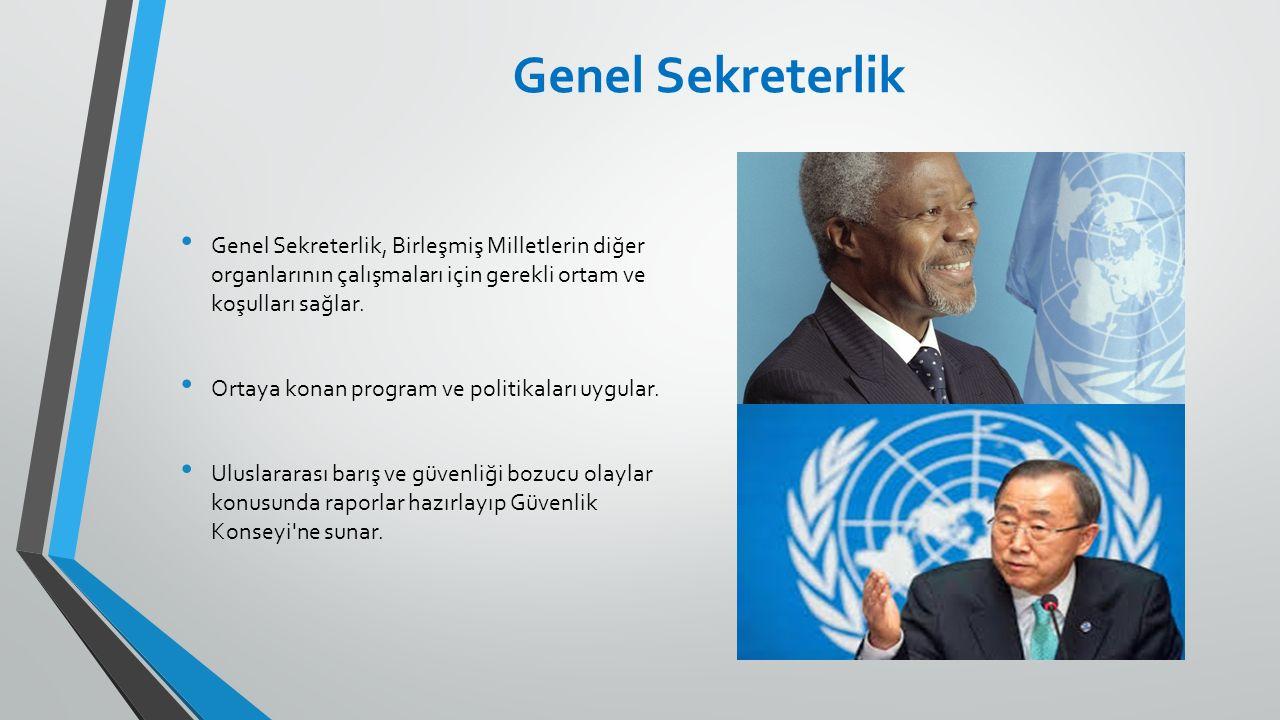 Genel Sekreterlik, Birleşmiş Milletlerin diğer organlarının çalışmaları için gerekli ortam ve koşulları sağlar. Ortaya konan program ve politikaları u