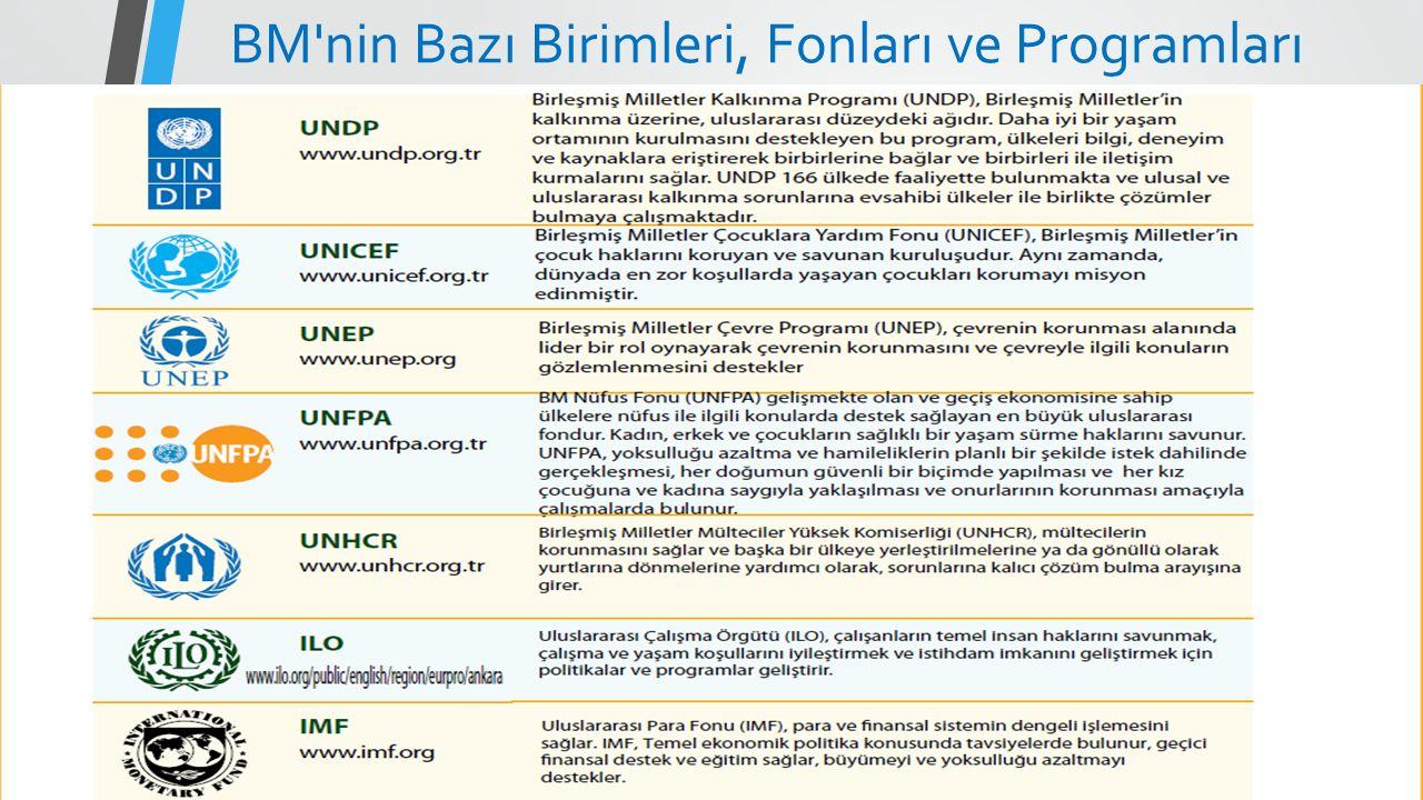 BM'nin Bazı Birimleri, Fonları ve Programları
