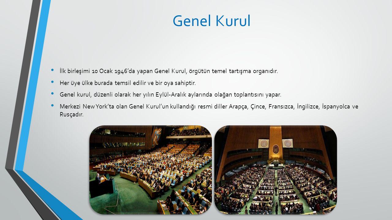 Genel Kurul İlk birleşimi 10 Ocak 1946'da yapan Genel Kurul, örgütün temel tartışma organıdır. Her üye ülke burada temsil edilir ve bir oya sahiptir.