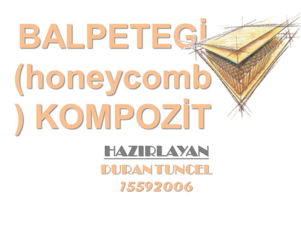 BALPETEGİ (honeycomb ) KOMPOZİT HAZIRLAYAN DURAN TUNCEL 15592006