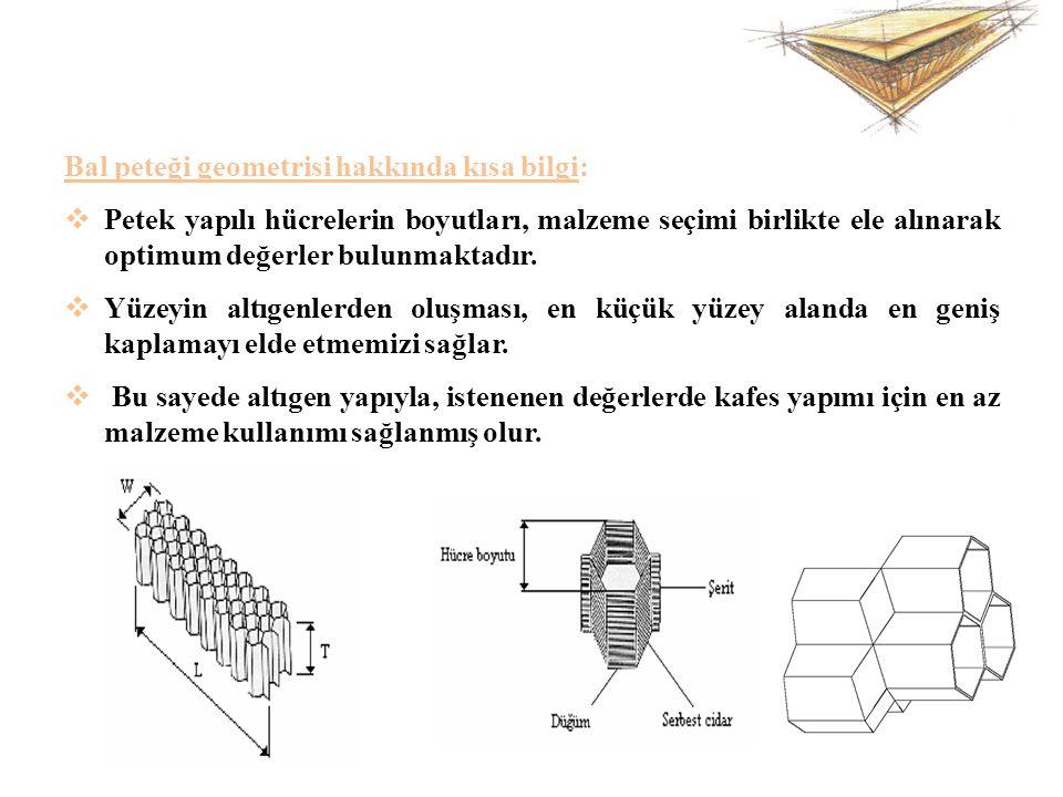 Bal peteği geometrisi hakkında kısa bilgi:  Petek yapılı hücrelerin boyutları, malzeme seçimi birlikte ele alınarak optimum değerler bulunmaktadır. 