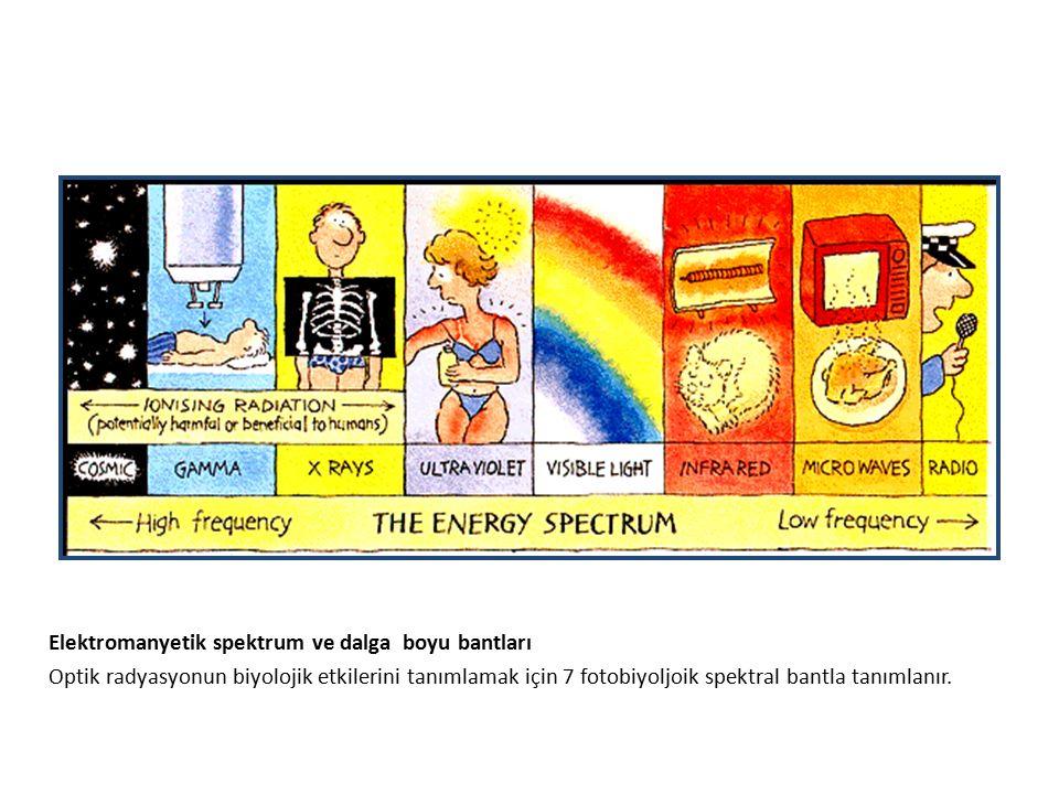 Elektromanyetik spektrum ve dalga boyu bantları Optik radyasyonun biyolojik etkilerini tanımlamak için 7 fotobiyoljoik spektral bantla tanımlanır.