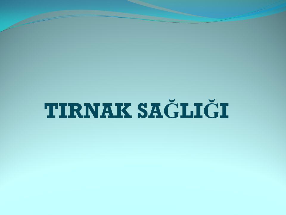 TIRNAK SA Ğ LI Ğ I