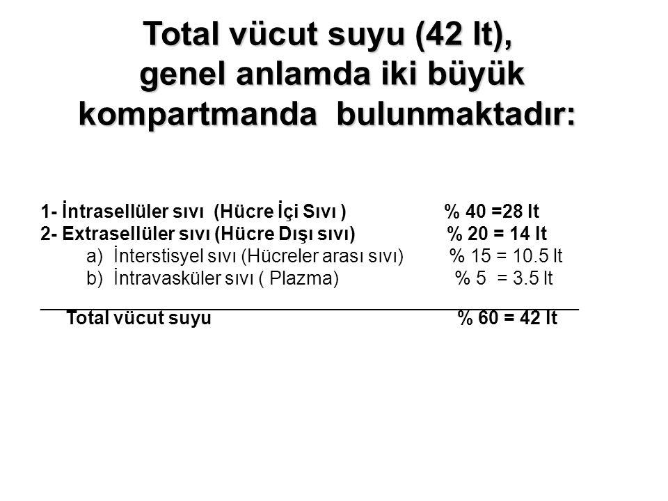 Total vücut suyu (42 lt), genel anlamda iki büyük kompartmanda bulunmaktadır: 1- İntrasellüler sıvı (Hücre İçi Sıvı ) % 40 =28 lt 2- Extrasellüler sıv