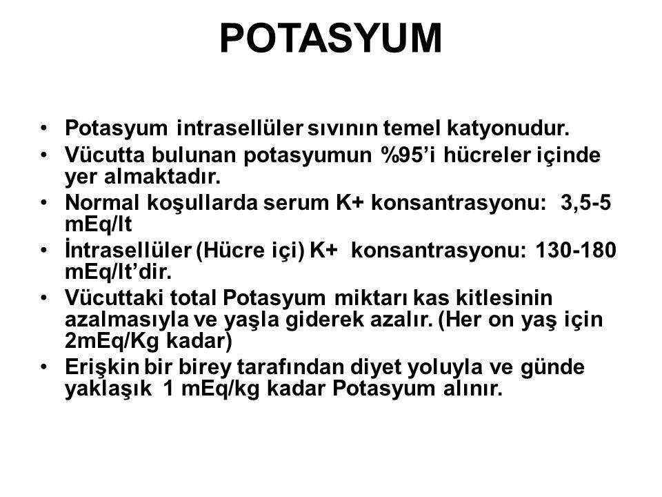 POTASYUM Potasyum intrasellüler sıvının temel katyonudur. Vücutta bulunan potasyumun %95'i hücreler içinde yer almaktadır. Normal koşullarda serum K+