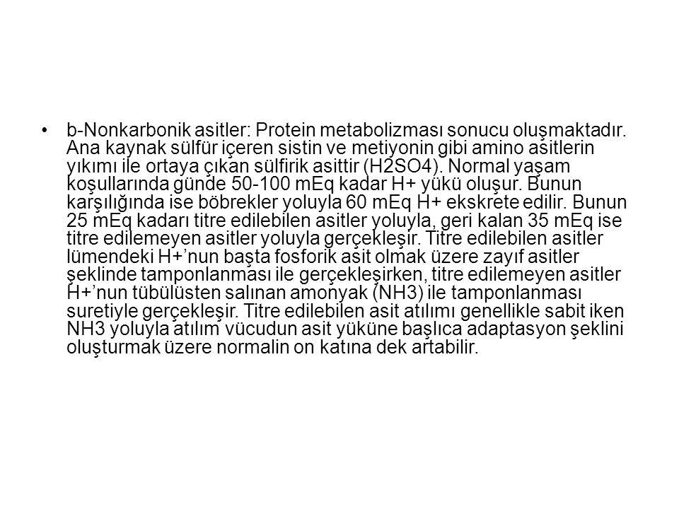 b-Nonkarbonik asitler: Protein metabolizması sonucu oluşmaktadır. Ana kaynak sülfür içeren sistin ve metiyonin gibi amino asitlerin yıkımı ile ortaya