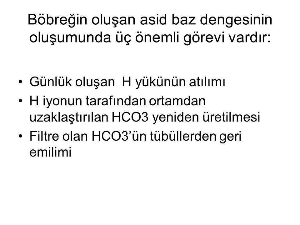 Böbreğin oluşan asid baz dengesinin oluşumunda üç önemli görevi vardır: Günlük oluşan H yükünün atılımı H iyonun tarafından ortamdan uzaklaştırılan HC