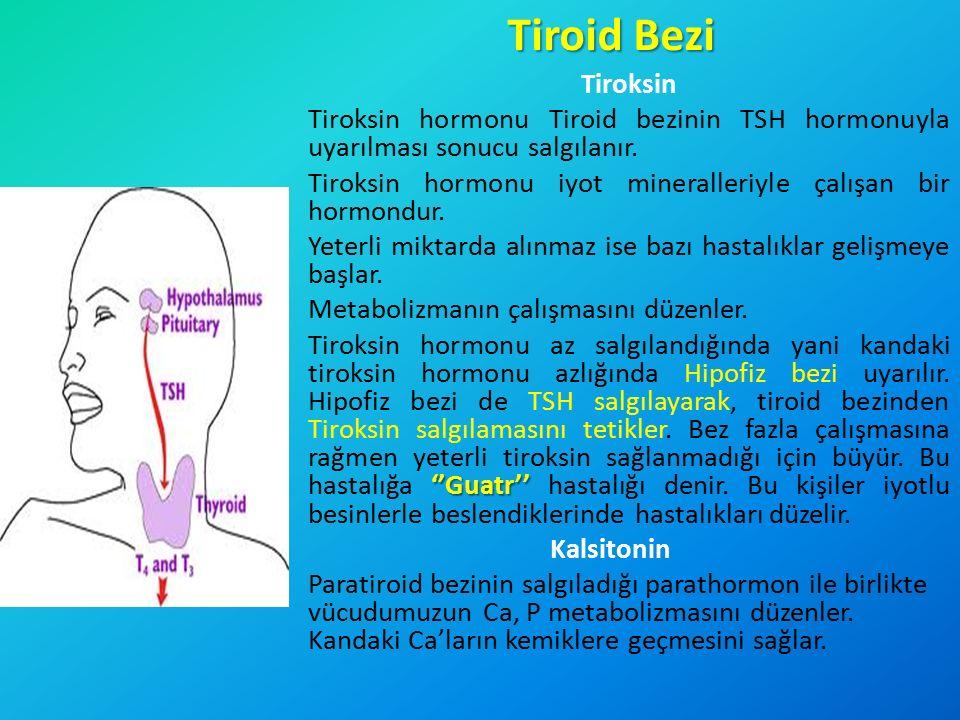 Tiroid Bezi Tiroksin Tiroksin hormonu Tiroid bezinin TSH hormonuyla uyarılması sonucu salgılanır. Tiroksin hormonu iyot mineralleriyle çalışan bir hor