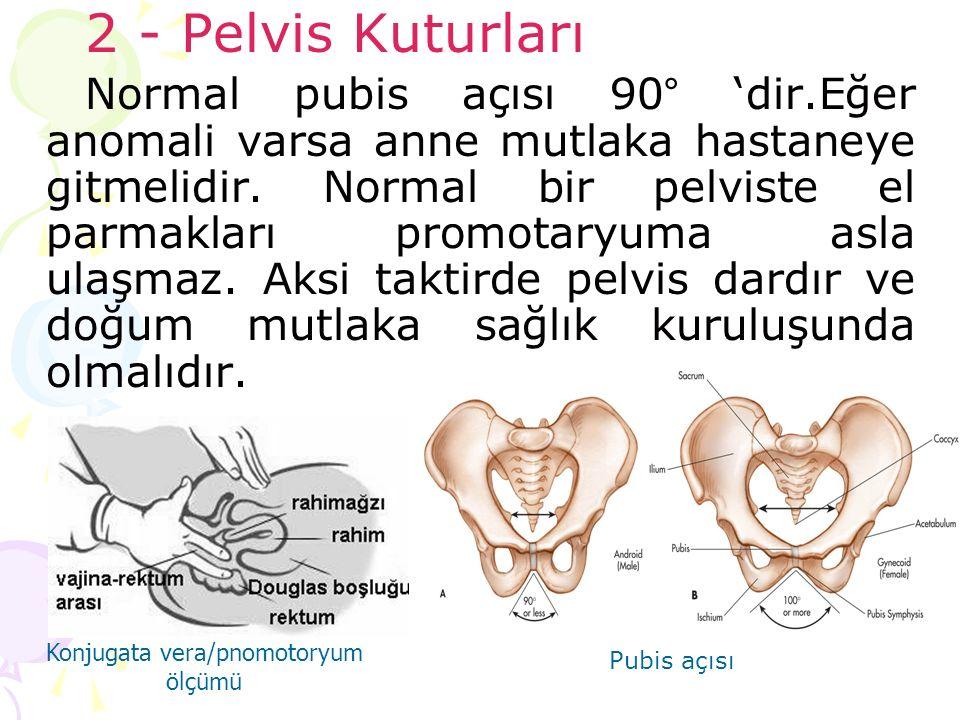 2 - Pelvis Kuturları Normal pubis açısı 90° 'dir.Eğer anomali varsa anne mutlaka hastaneye gitmelidir. Normal bir pelviste el parmakları promotaryuma