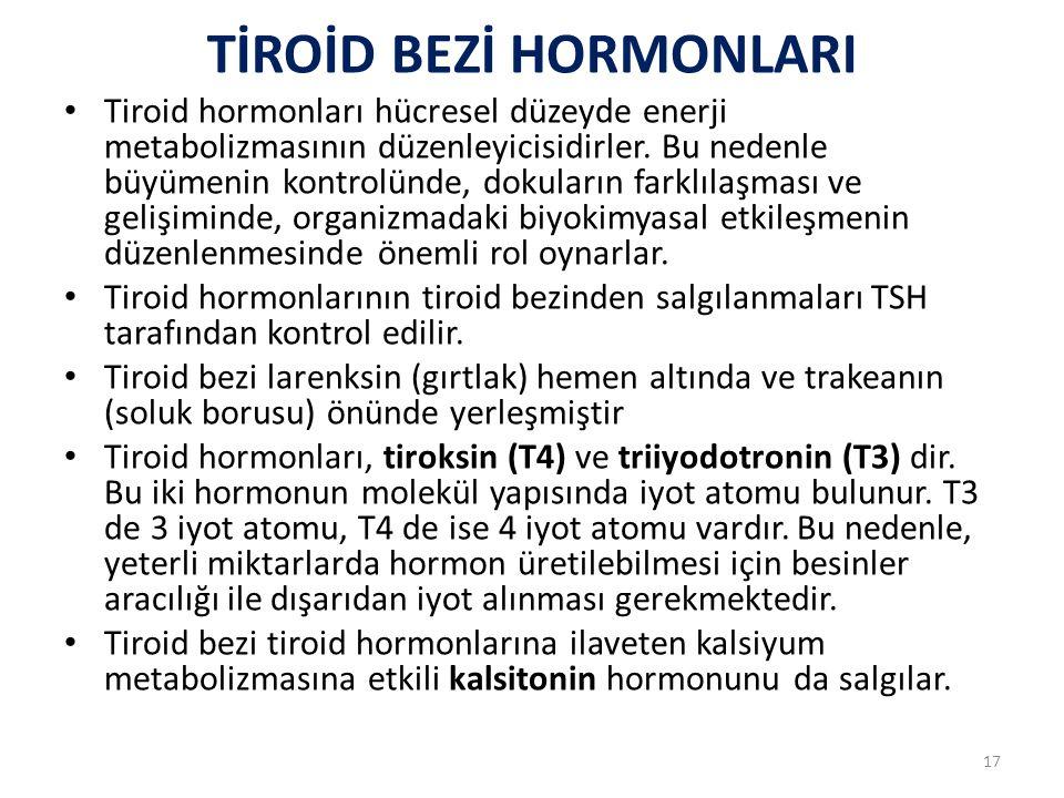 Tiroid hormonları, organizmada tüm hücrelerin gelişmesi ve normal çalışması için gereken temel biyolojik olaylara etkilidirler.