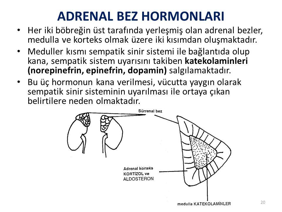 Adrenal korteks, madulladan farklı olarak hipofiz ön lop hormonu olan ACTH ile uyarıldıktan sonra kana kortikosteroidler adı verilen bir grup hormonu salgılamaktadır.