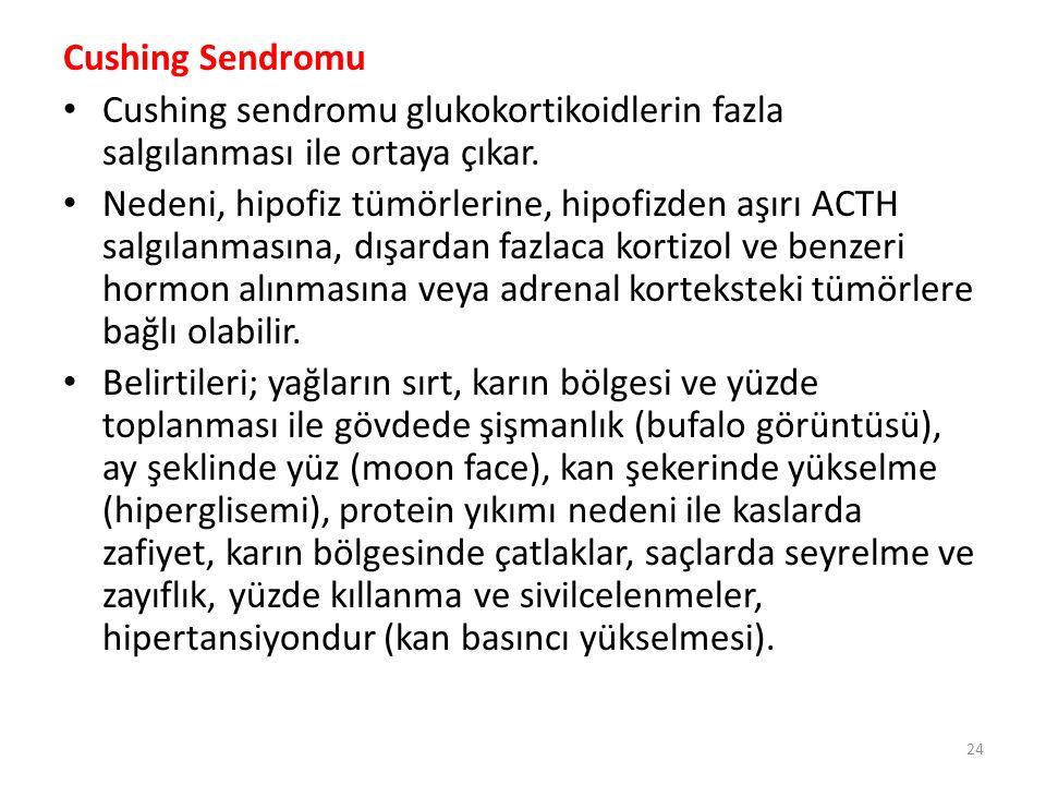 Conn Sendromu Mineralokortikoid fazlalığında ortaya çıkmaktadır.