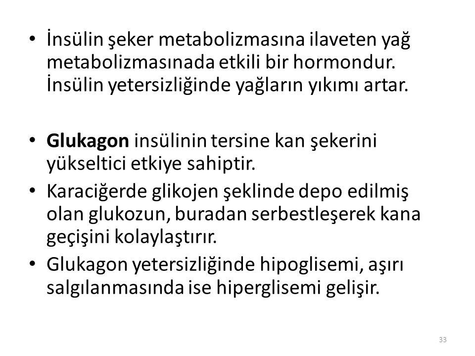 KALSİYUM METABOLİZMASINA ETKİLİ HORMONLAR Kalsiyum metabolizmasının düzenlenmesinde görev alan 3 hormon vardır.