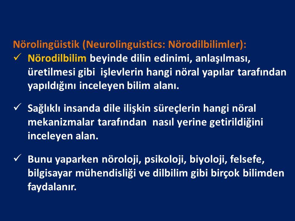 Nörolingüistik (Neurolinguistics: Nörodilbilimler): Nörodilbilim beyinde dilin edinimi, anlaşılması, üretilmesi gibi işlevlerin hangi nöral yapılar ta