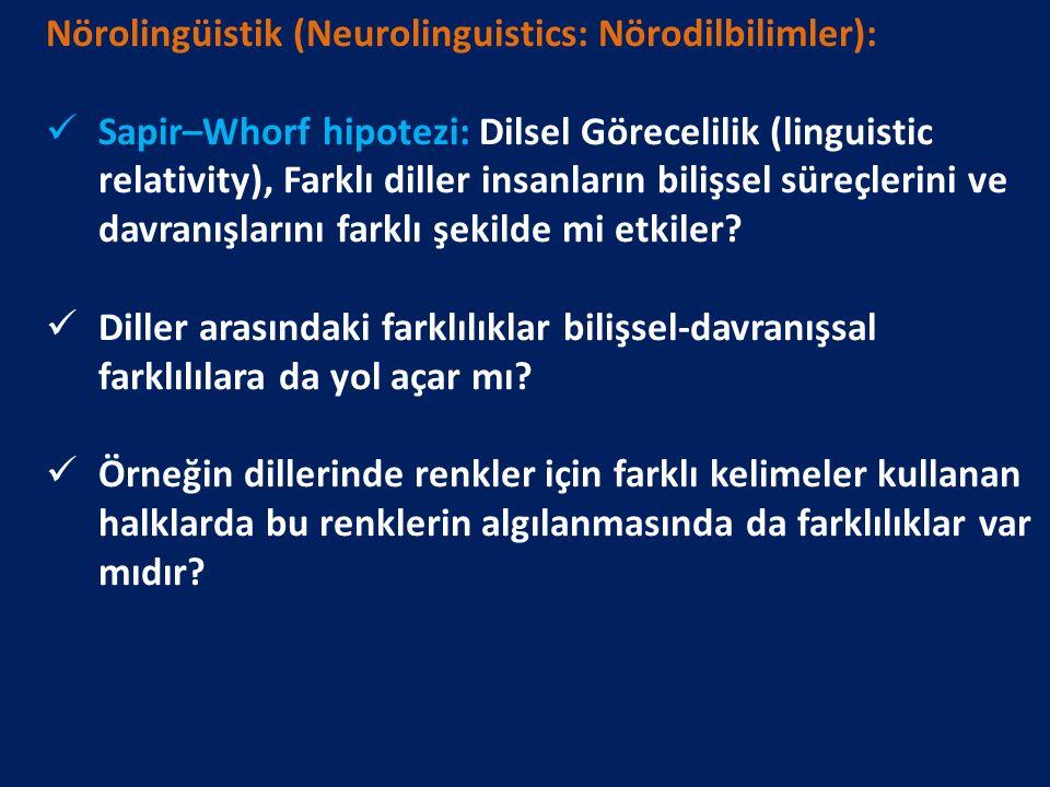 Nörolingüistik (Neurolinguistics: Nörodilbilimler): Sapir–Whorf hipotezi: Dilsel Görecelilik (linguistic relativity), Farklı diller insanların bilişse