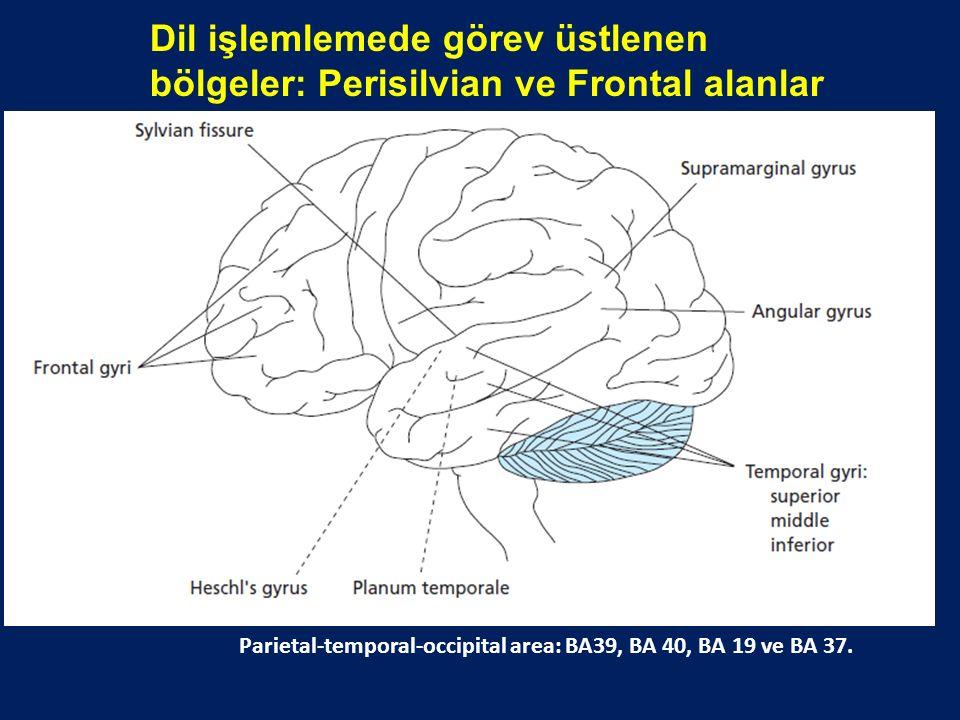 Dil işlemlemede görev üstlenen bölgeler: Perisilvian ve Frontal alanlar Afazi değerlendirmesi (Lezak, 1983) Parietal-temporal-occipital area: BA39, BA