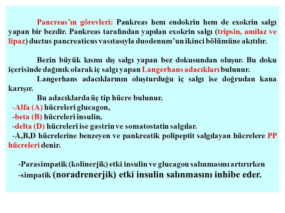 Pancreas'ın görevleri: Pankreas hem endokrin hem de exokrin salgı yapan bir bezdir.