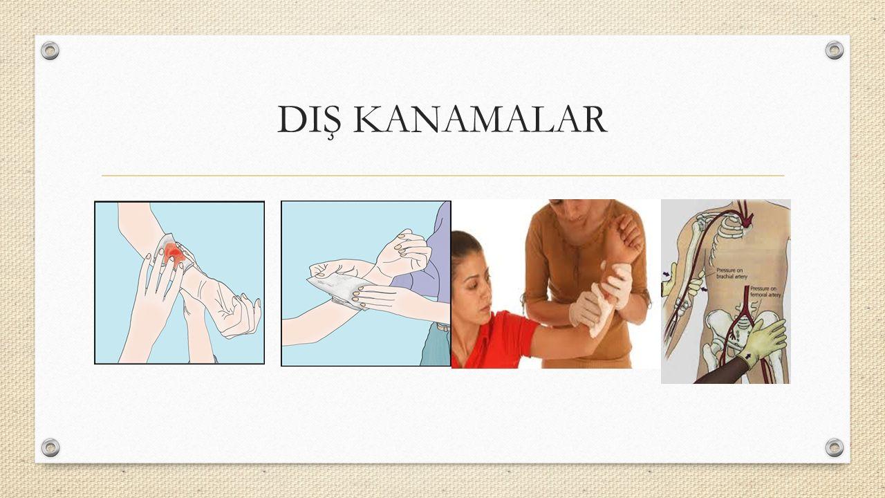 DIŞ KANAMALAR