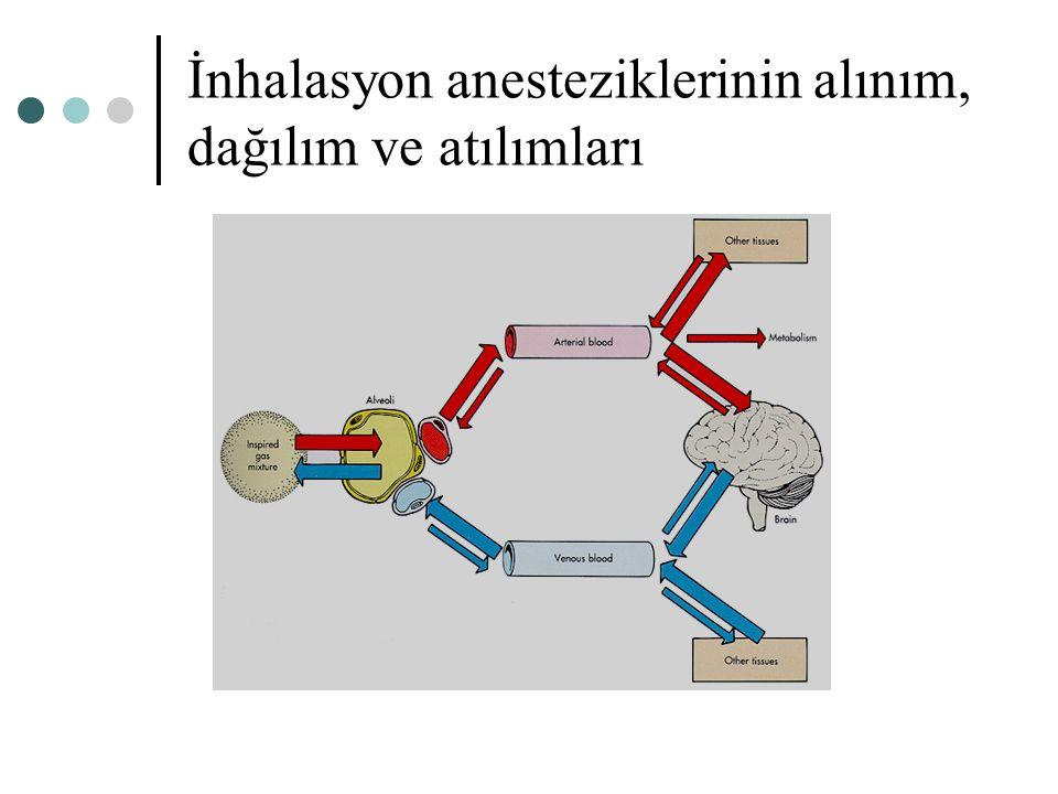 İnhalasyon anesteziklerinin alınım, dağılım ve atılımları