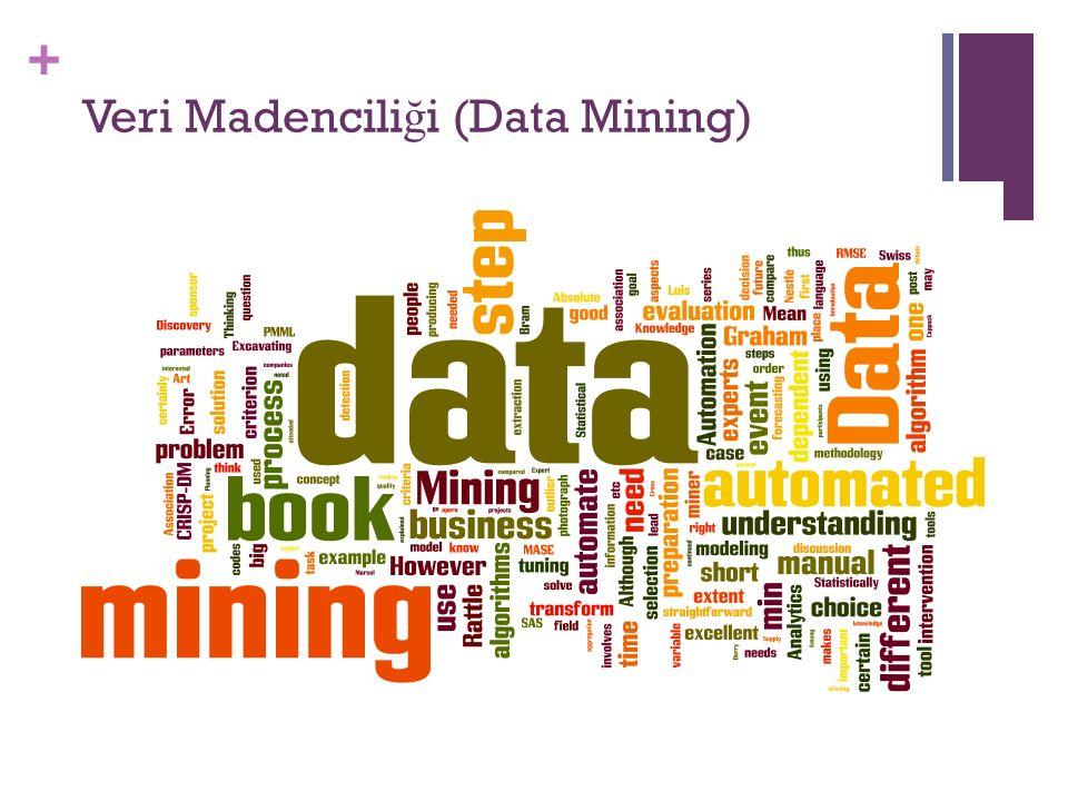 + Veri Madencili ğ i (Data Mining)