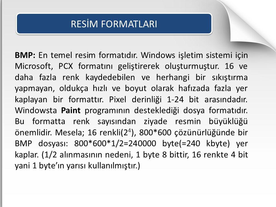BMP: En temel resim formatıdır. Windows işletim sistemi için Microsoft, PCX formatını geliştirerek oluşturmuştur. 16 ve daha fazla renk kaydedebilen v