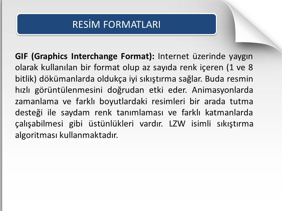 GIF (Graphics Interchange Format): Internet üzerinde yaygın olarak kullanılan bir format olup az sayıda renk içeren (1 ve 8 bitlik) dökümanlarda olduk