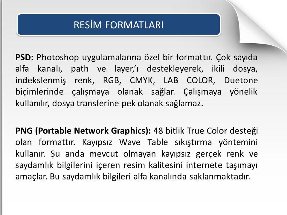 PSD: Photoshop uygulamalarına özel bir formattır. Çok sayıda alfa kanalı, path ve layer,'ı destekleyerek, ikili dosya, indekslenmiş renk, RGB, CMYK, L