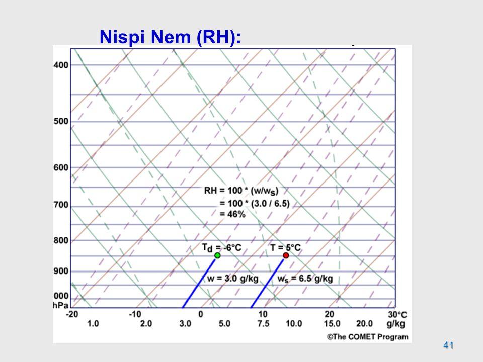 41 Nispi Nem (RH):