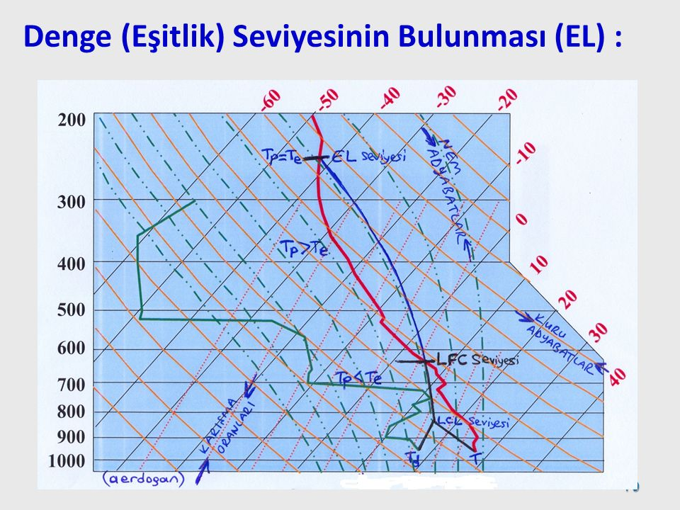 Denge (Eşitlik) Seviyesinin Bulunması (EL) : 79