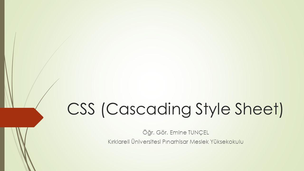 CSS (Cascading Style Sheet) Öğr. Gör. Emine TUNÇEL Kırklareli Üniversitesi Pınarhisar Meslek Yüksekokulu