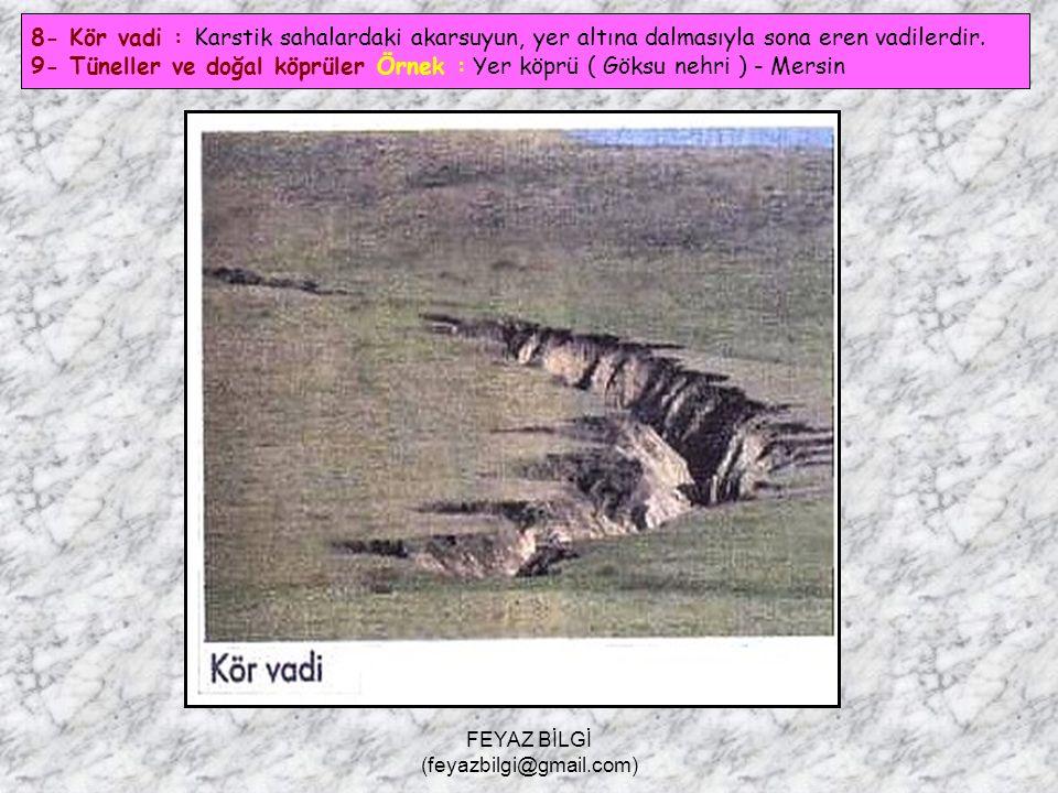 FEYAZ BİLGİ (feyazbilgi@gmail.com) 7- Düden : Uvala veya polyelerin tabanlarında biriken suları yer altına boşaltan kuyulara denir.