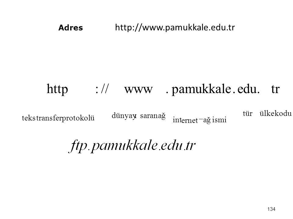 Adres http://www.pamukkale.edu.tr 134 kodu ülketür ismi ağ ernet int ağsaran dünyayı protokolü transfer teks tr.edu.