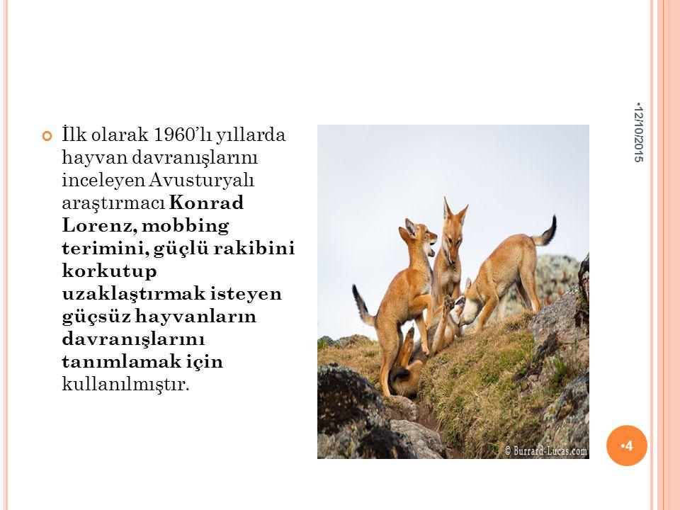 İlk olarak 1960'lı yıllarda hayvan davranışlarını inceleyen Avusturyalı araştırmacı Konrad Lorenz, mobbing terimini, güçlü rakibini korkutup uzaklaştı