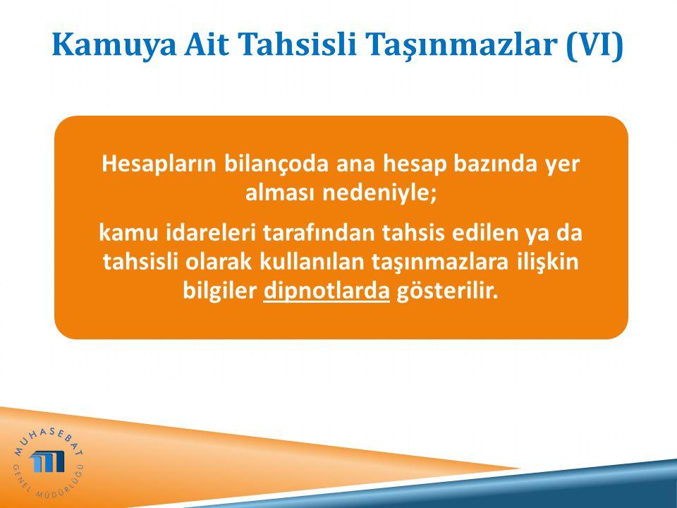 Kamuya Ait Tahsisli Taşınmazlar (VI) Hesapların bilançoda ana hesap bazında yer alması nedeniyle; kamu idareleri tarafından tahsis edilen ya da tahsis