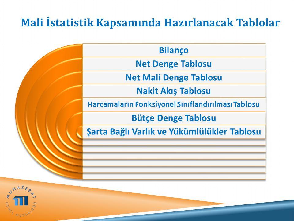 Mali İstatistik Kapsamında Hazırlanacak Tablolar Bilanço Net Denge Tablosu Net Mali Denge Tablosu Nakit Akış Tablosu Harcamaların Fonksiyonel Sınıflan