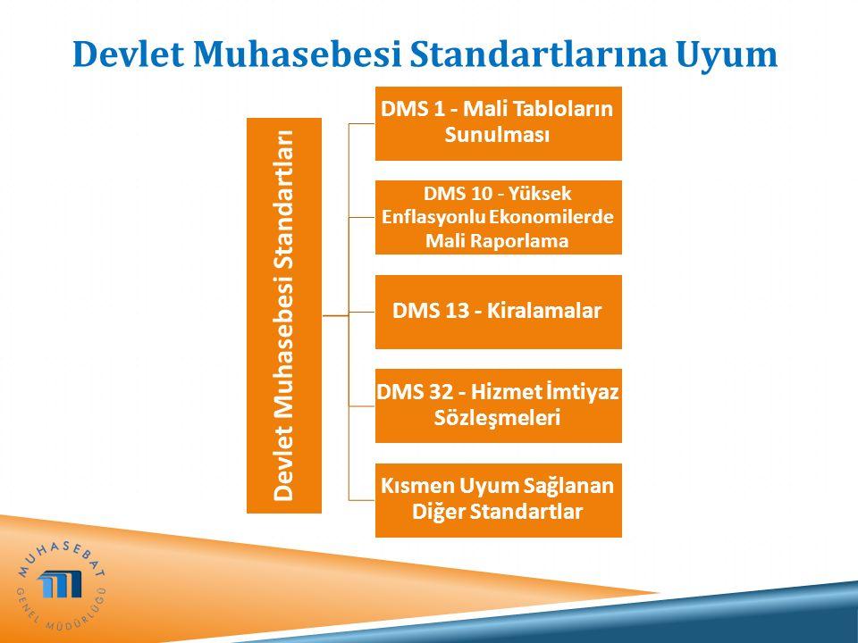 Devlet Muhasebesi Standartlarına Uyum Devlet Muhasebesi Standartları DMS 1 - Mali Tabloların Sunulması DMS 10 - Yüksek Enflasyonlu Ekonomilerde Mali R