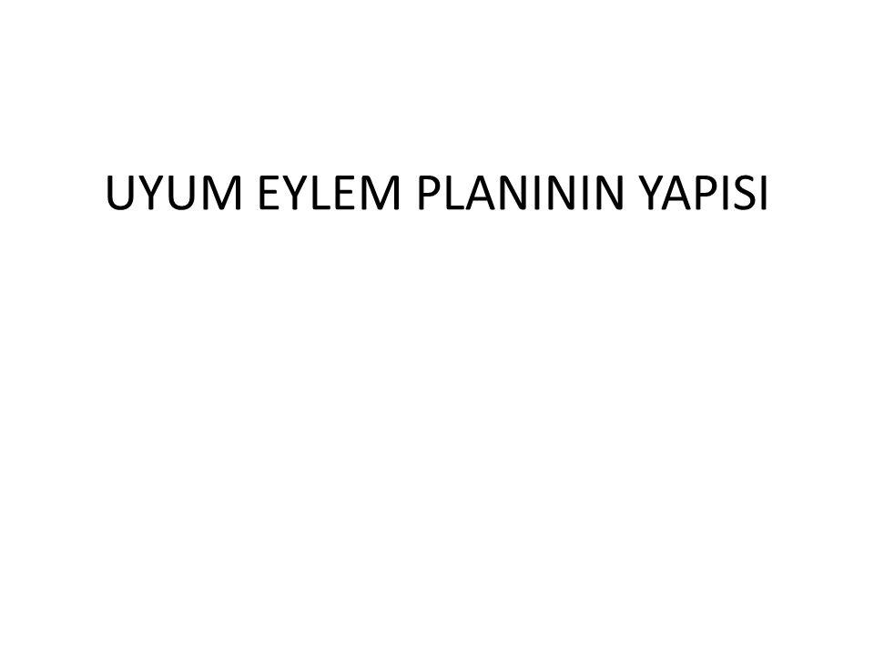 UYUM EYLEM PLANININ YAPISI