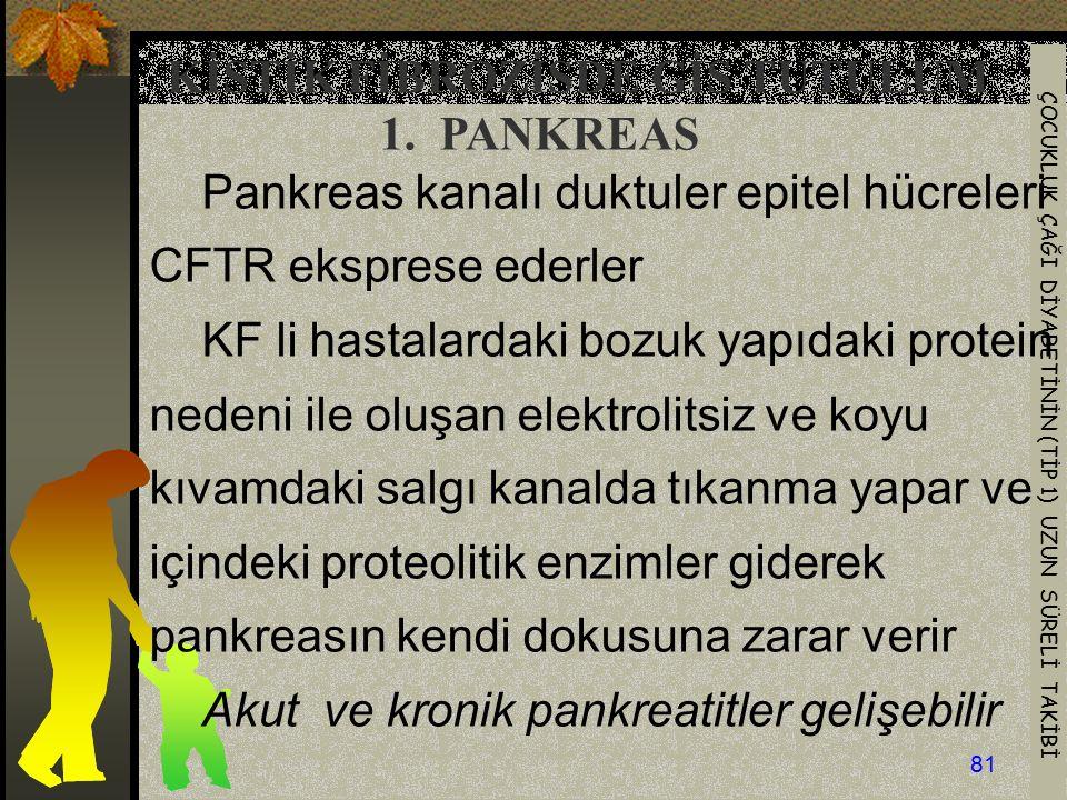 ÇOCUKLUK ÇAĞI DİYABETİNİN (TİP 1) UZUN SÜRELİ TAKİBİ 81 Pankreas kanalı duktuler epitel hücreleri CFTR eksprese ederler KF li hastalardaki bozuk yapıd