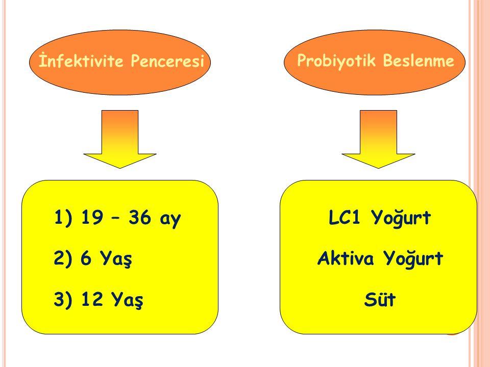 İnfektivite Penceresi Probiyotik Beslenme 1) 19 – 36 ay 2) 6 Yaş 3) 12 Yaş LC1 Yoğurt Aktiva Yoğurt Süt