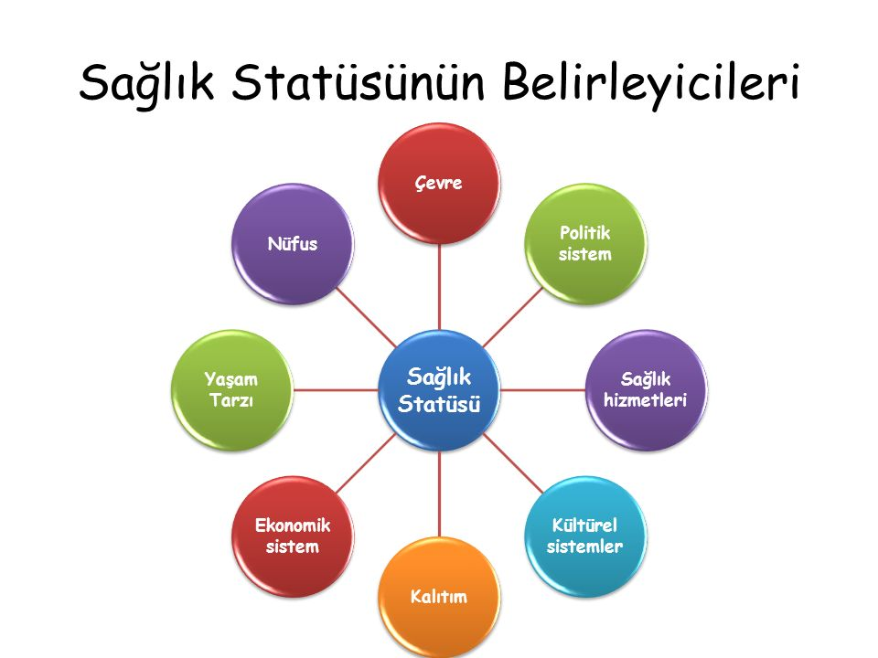 Sağlık Statüsünün Belirleyicileri Sağlık Statüsü Çevre Politik sistem Sağlık hizmetleri Kültürel sistemler Kalıtım Ekonomik sistem Yaşam Tarzı Nüfus