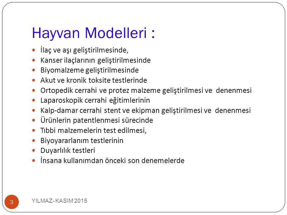 Hayvan Modelleri YILMAZ- KASIM 2015 4 Fare Sıçan Kobay Tav ş an Ferret Hamster Gerbil Domuz Maymun Koyun