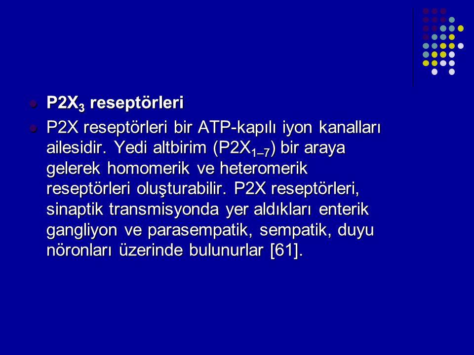 P2X 3 reseptörleri P2X 3 reseptörleri P2X reseptörleri bir ATP-kapılı iyon kanalları ailesidir. Yedi altbirim (P2X 1–7 ) bir araya gelerek homomerik v