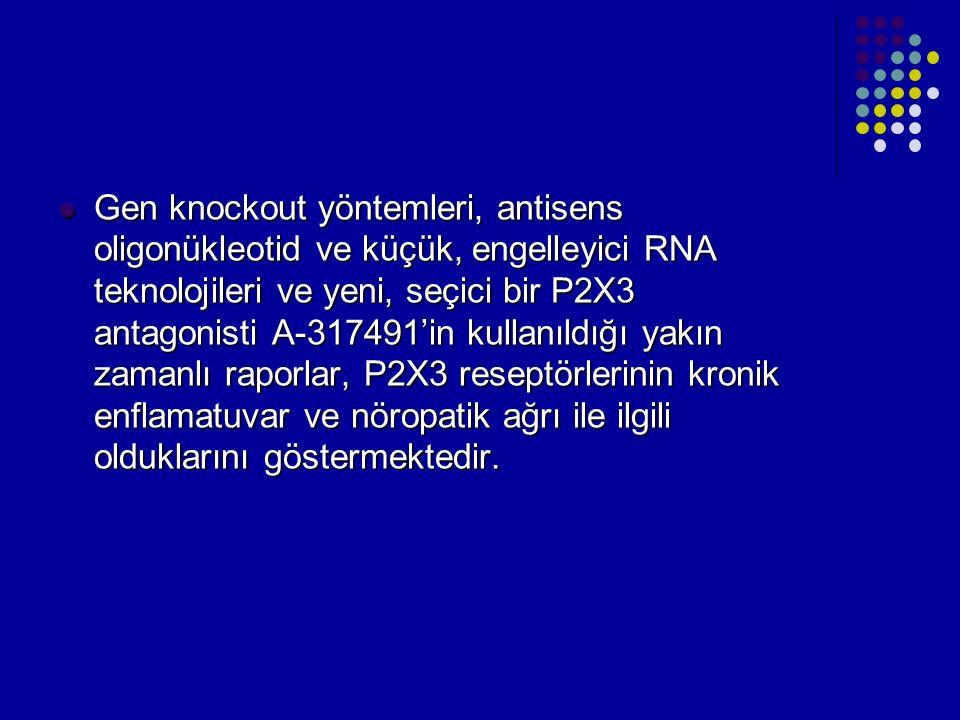 Gen knockout yöntemleri, antisens oligonükleotid ve küçük, engelleyici RNA teknolojileri ve yeni, seçici bir P2X3 antagonisti A-317491'in kullanıldığı