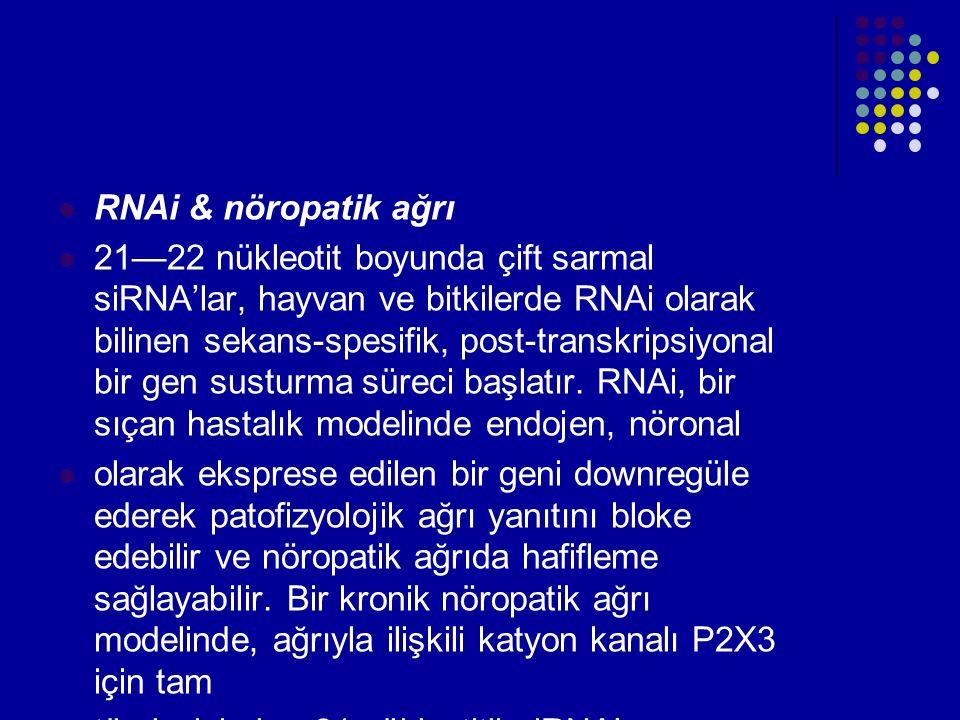 RNAi & nöropatik ağrı 21—22 nükleotit boyunda çift sarmal siRNA'lar, hayvan ve bitkilerde RNAi olarak bilinen sekans-spesifik, post-transkripsiyonal b