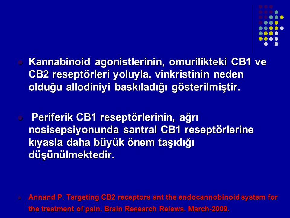 Kannabinoid agonistlerinin, omurilikteki CB1 ve CB2 reseptörleri yoluyla, vinkristinin neden olduğu allodiniyi baskıladığı gösterilmiştir. Kannabinoid